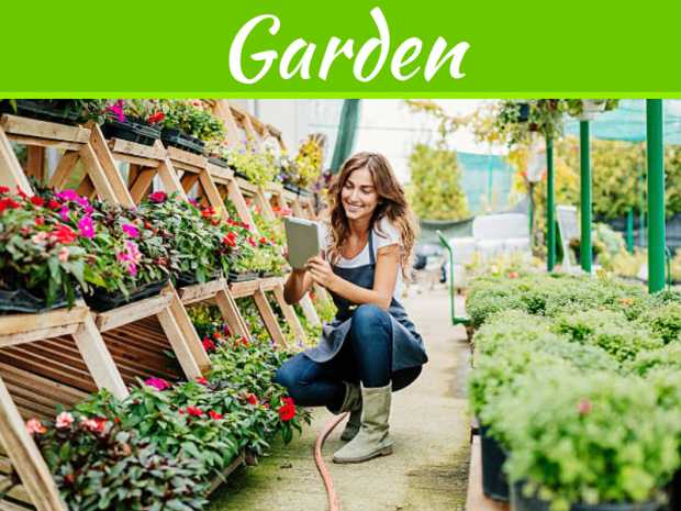 5 Tips to Creating a Garden at Home