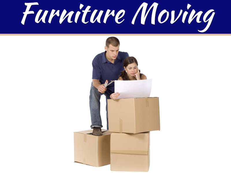 Why A Professional Furniture Moving Company Is Essential For Your Next Home Transfer