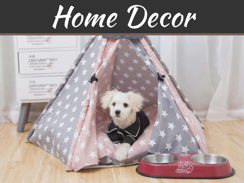 Matching Your Dog Bed With Your Home Décor