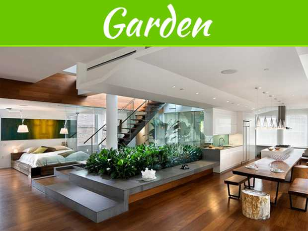 How To Start Your Indoor Garden