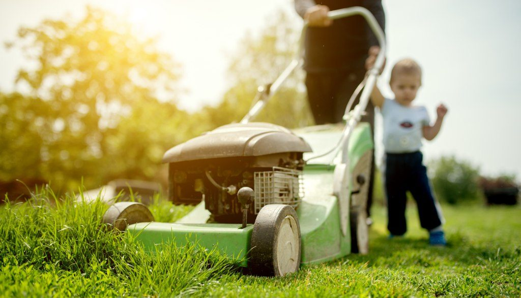The Best Walk Behind Mower Safety Tips You Need To Know