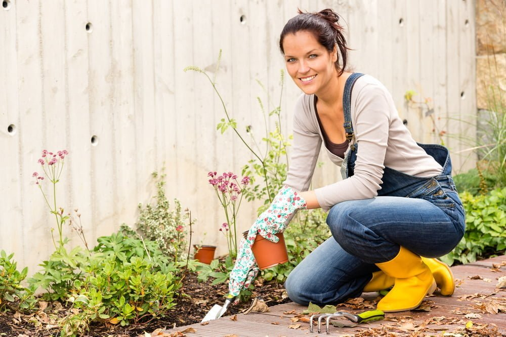 4 Tips To Taking Care Of Your Garden