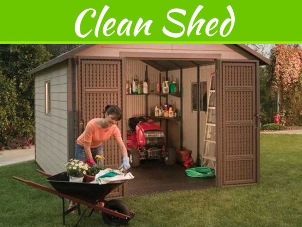Keep Your Shed Organized And Clean