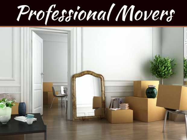Professional Movers Provide The Best Process For The Best Results