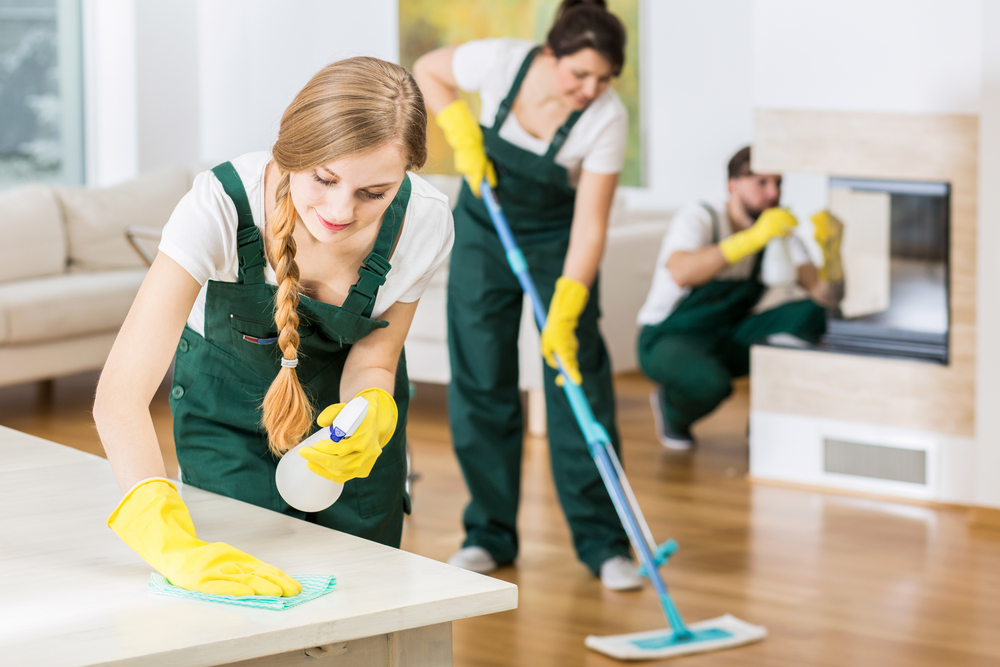 Professionals Cleaners