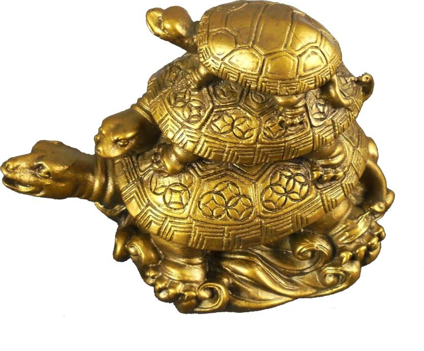 Tortoise Direction For Financial, Health And Relationship Stability