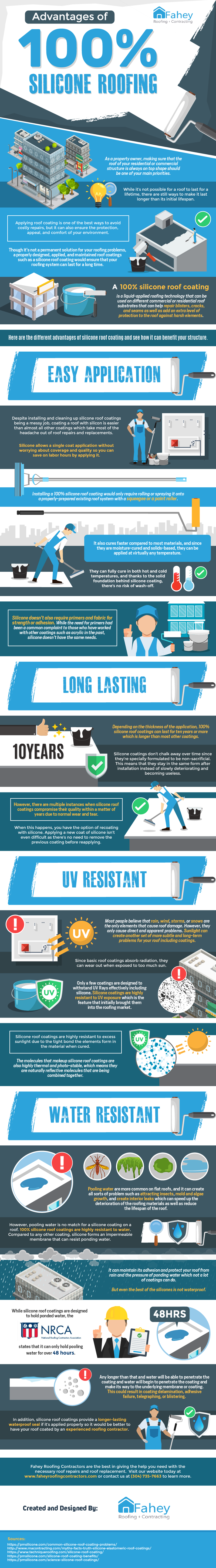 Advantages Of 100% Silicone Roofing - Infographic