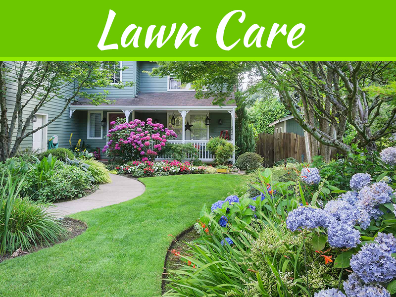 Make Your Lawn Fresh And Healthy With Advice From Top Quality Lawn Care Experts