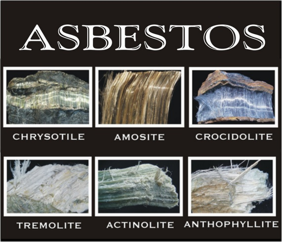Types of Asbestos Removal Licenses