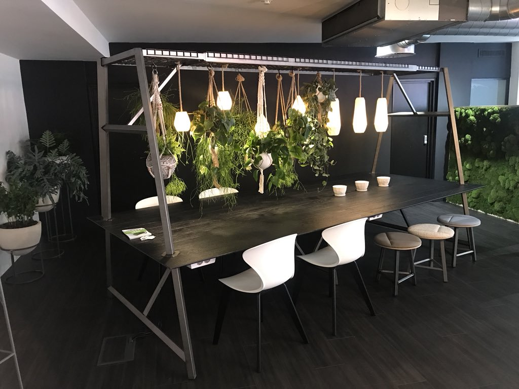 Biophilia Furniture