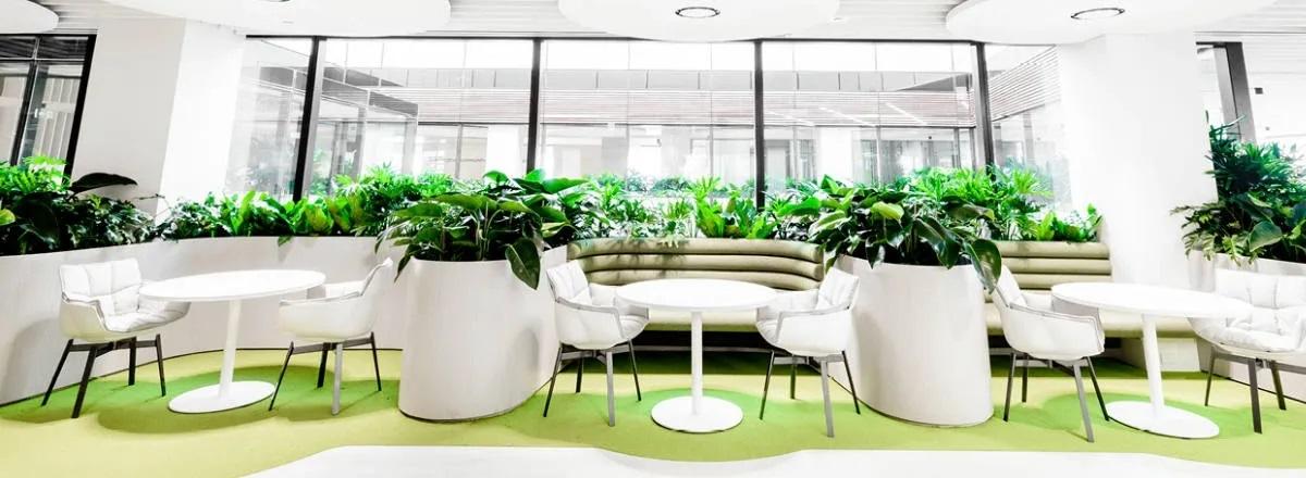 Biophilic Interior