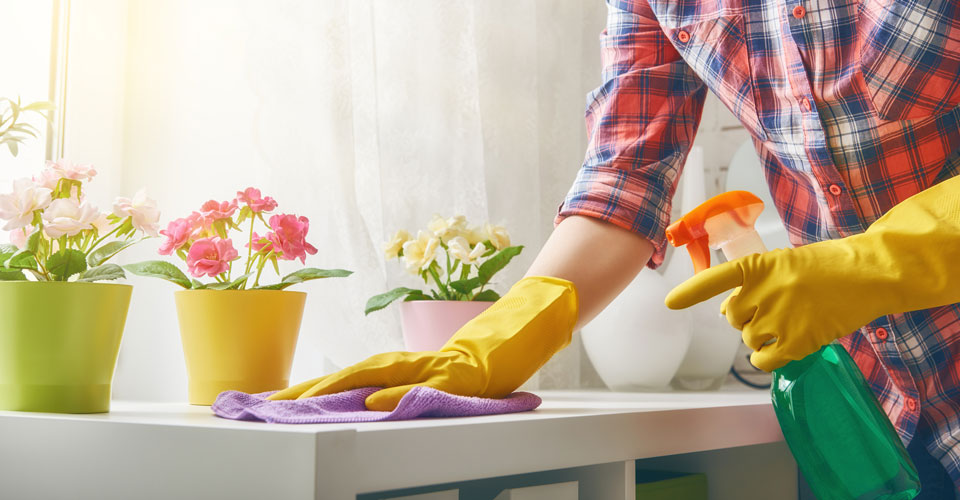 Eco-Friendly Home Cleaning Product