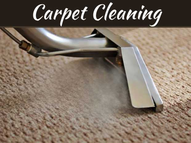 Reasons To Request Professional Carpet Cleaning Services