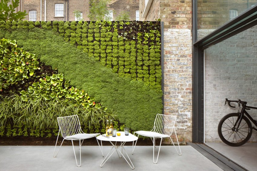 Vertical Garden In The Patio
