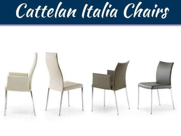 Cattelan Italia Chairs: Unquestionable Comfort, Unrivaled Charm