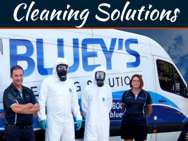 Cleaning Solutions Providers; What Services They Offer?