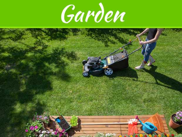 How to Keep Your Lawn Alive and Thriving All Summer