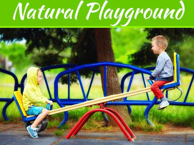 What Are Natural Playgrounds, And Why Are They Important?