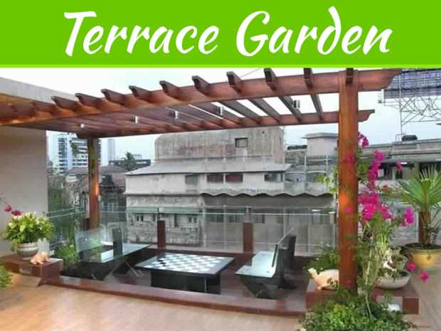 Creative Tips To Decorate A Terrace Garden For Homes And Apartments In Kerala