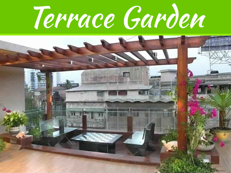 Creative Tips To Decorate A Terrace Garden For Homes And