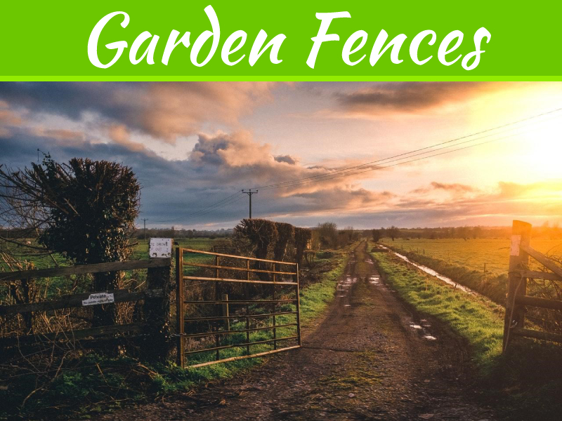 Everything You Need To Know About Garden Fences