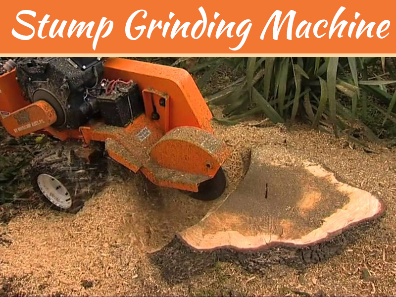 Factors To Consider When Picking A Stump Grinding Machine