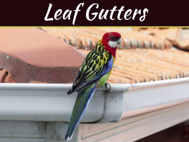 How Much It Actually Costs to Install Leaf Gutters