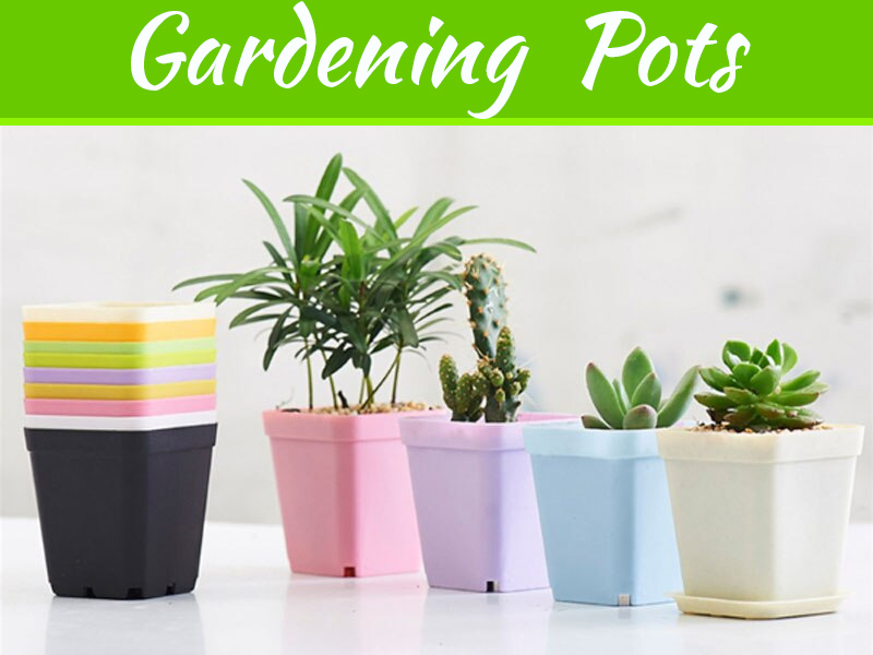 Innovative Gardening With Square Pots