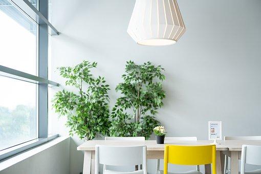 Plants In Corner Of Dining Room