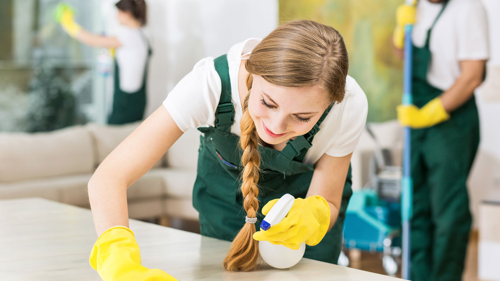 Professional Cleaner