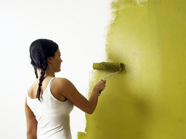 Quality Wall Paint Work