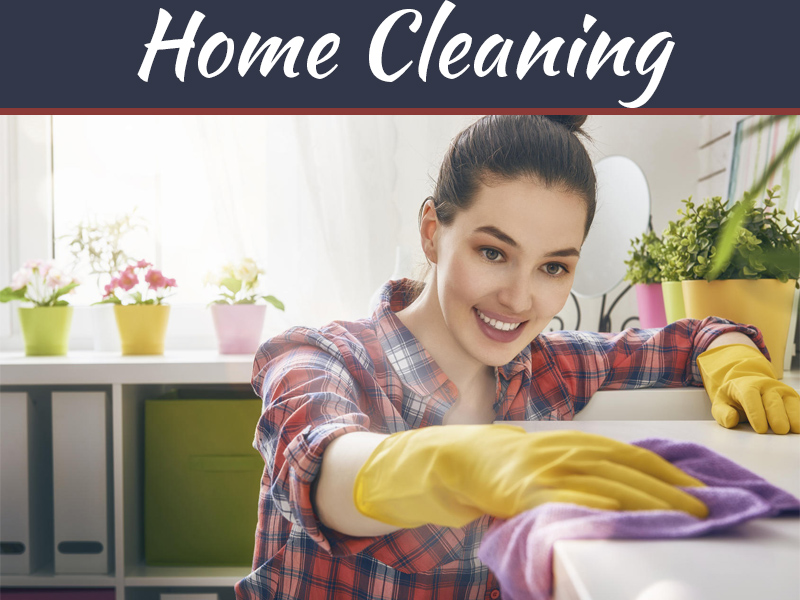 Is Cleaning Your House Necessary?