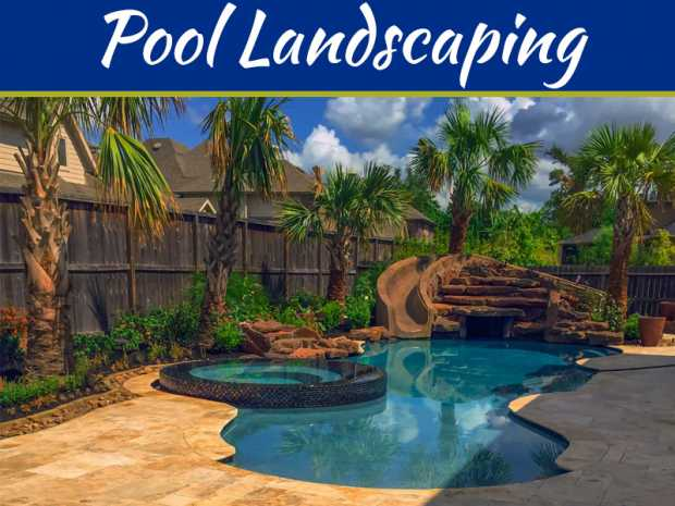 Pool Landscaping Ideas On A Budget