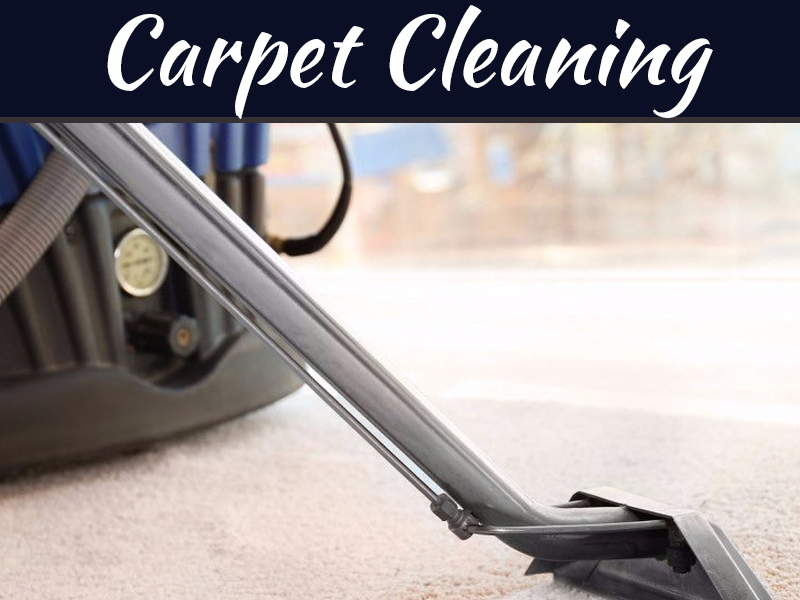 Tips To Clean Shaggy Carpets And Prevent Indoor Air Pollution