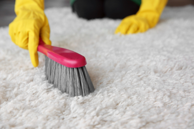 Soft Brush for Rug Cleaning