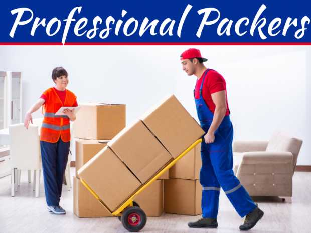 Should I Hire Professional Packers To Pack My Home When Moving?