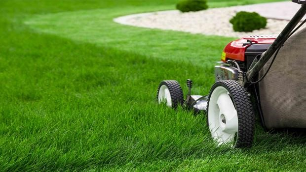 Mowing In Patterns