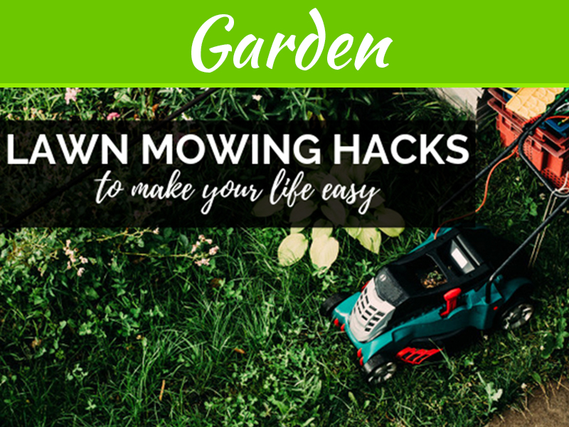 Lawn Mowing Hacks To Make Your Life Easy