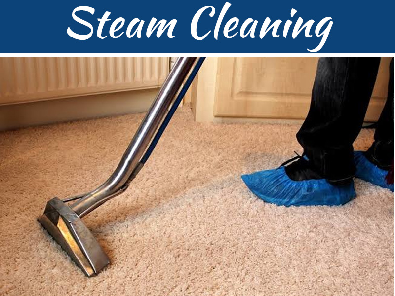 Steam Cleaner Secrets - The Beautifying Benefits Of Steam Cleaning