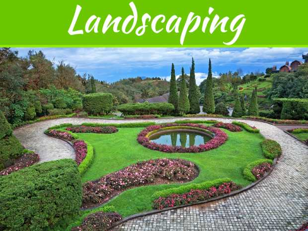 The Best Landscape Supplies To Use For Your House