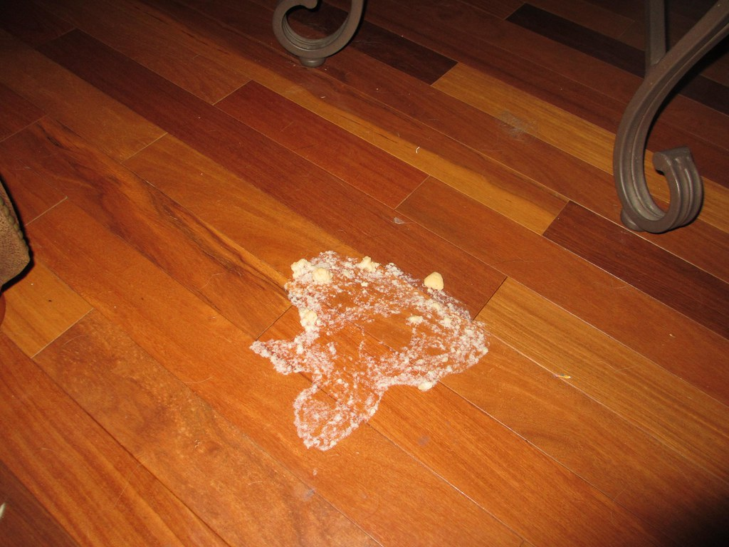 Vomit Floor Stains