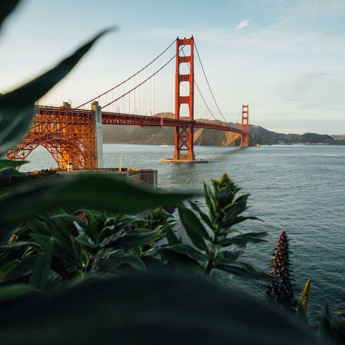 San Francisco Charter Bus Rental
