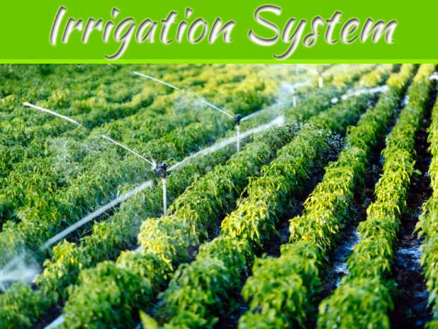 Advantages & Disadvantages of Irrigation Systems