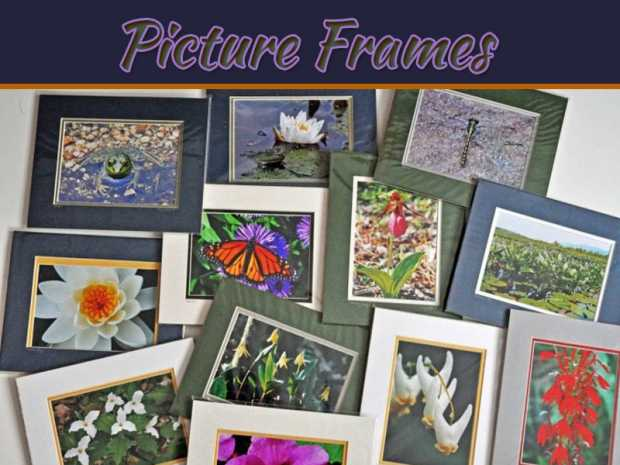 How Best To Prevent Your Picture Frames From Rot
