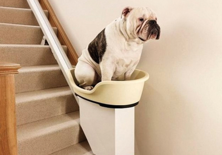 Adorable Stairlifts