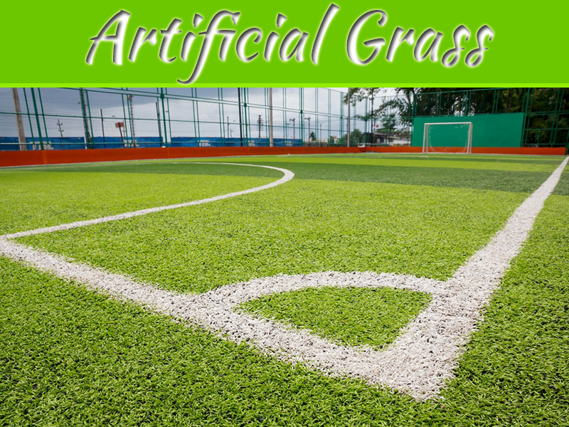 Different Types Of Artificial Grass That Can Beautify Your Home
