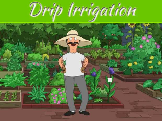 Drip Irrigation And How It Can Work Best For Your Garden?