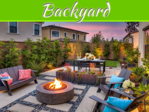 3 Purchases To Revamp Your Garden Without Landscaping