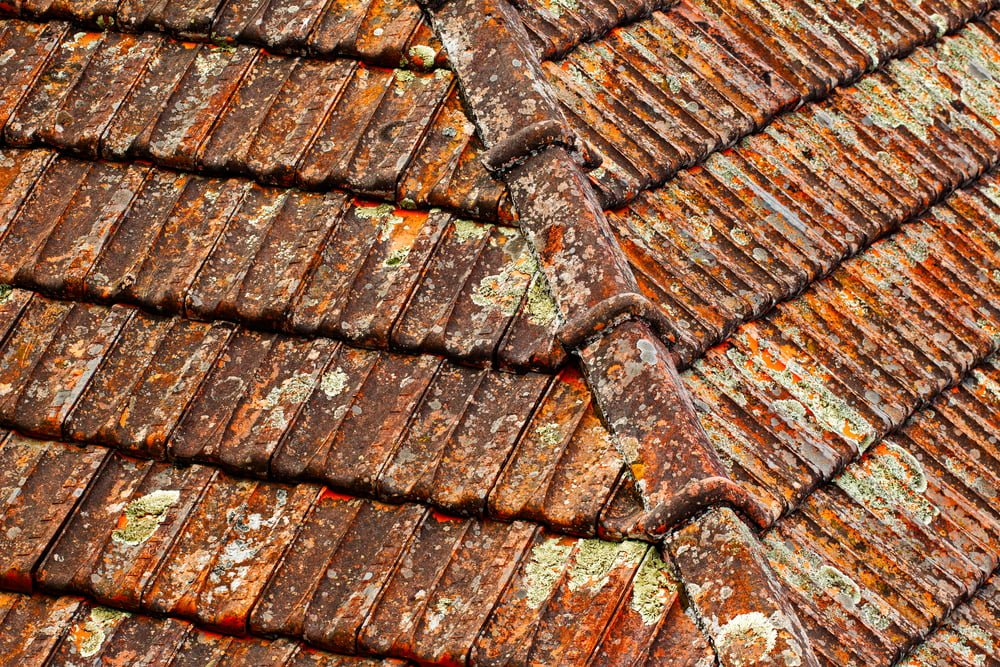 Granular Retentio Roof Shingles