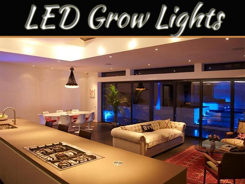 Thinking About Using LED Grow Lights? Here Are The 5 Mistakes To Avoid